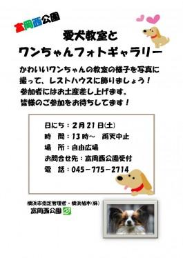 愛犬教室と ワンちゃんフォトギャラリー